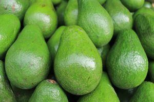 avocados a health fat that helps with weight loss
